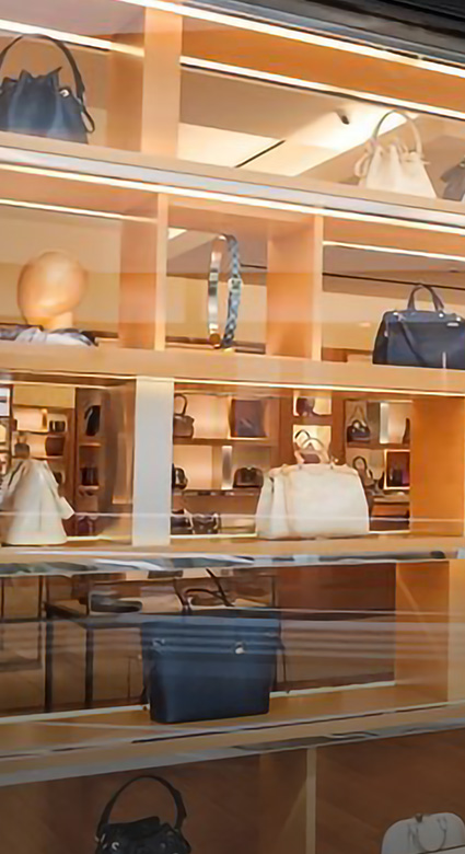 home_page-section1_projet_pro-vitrine_louis_vuitton